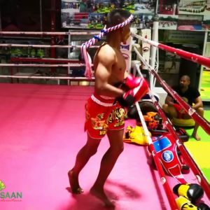 Muay Thai camp in Thailand